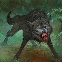 direwolf's Avatar
